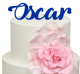 Handwriting Font Personalised Name Cake Acrylic Topper